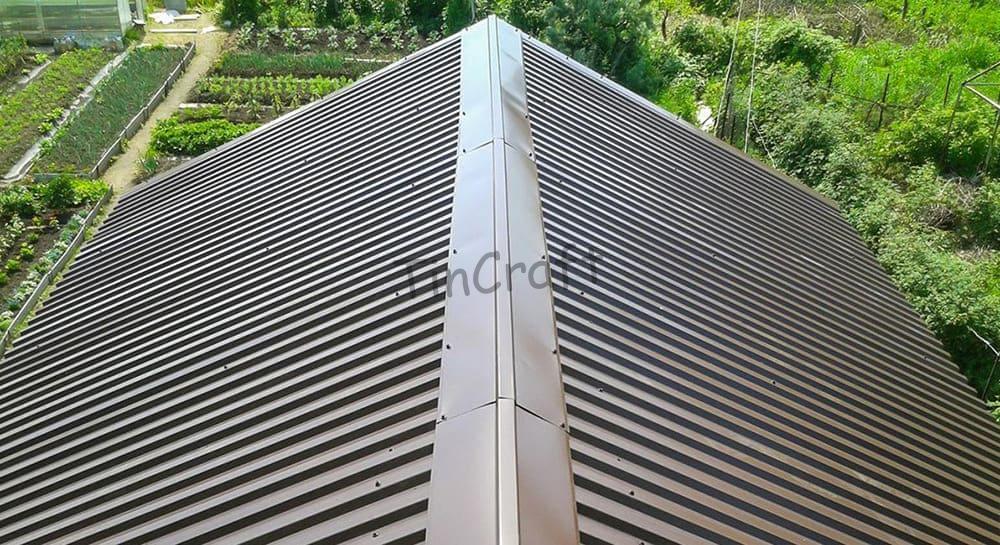 Профнастил 20 для крыши